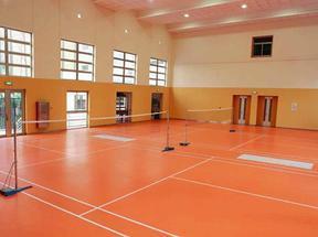 羽毛球地板,羽毛球专用地胶,地板