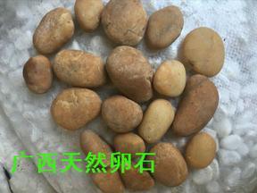 4-6cm天然黄色椭圆黄蜡石