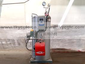 燃油蒸汽发生器 50公斤全自动蒸汽锅炉
