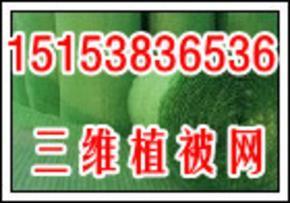 北京三维植被网什么系列