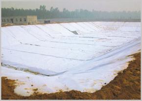 土工布-土工膜