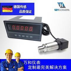 DG1300-DZ压力变送器