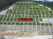 PP三维植被网规格,三维植被网厂家泰安基地常年销售