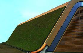 户外屋顶绿化 wpc垂直绿化植物墙