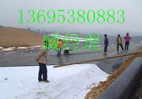 安徽膨润土防水毯芜湖土工膜