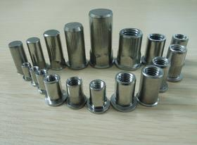 工程安装紧固件,不锈钢铆螺母