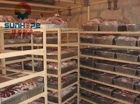肉类冷库/保鲜冷库/低温冷库/排管冷库