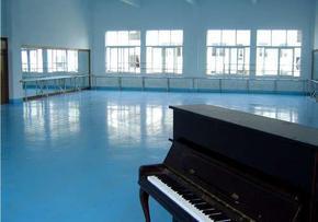 舞蹈地板,长盈舞蹈地板