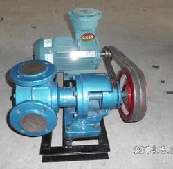 NCB系列高粘度内齿泵厂-现货直销NCB-20/0.5型内齿泵