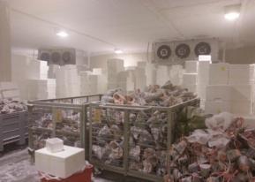 组合式冷库、物流冷库、超市冷库、气调冷库