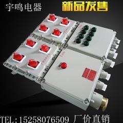 防爆动力配电箱BXM(D)