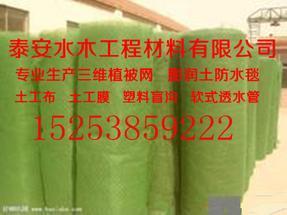 万宁三维植被网【厂家】15253859222