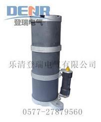 供应RXQ-35D,RXQ-20D一次消谐器