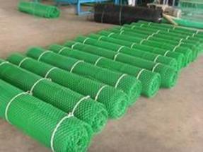 池州三维植被网提高边坡的稳定性