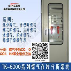 山东TK-6000型焦炉煤气氧量分析仪