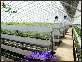 山东寿光温室专用苗床网_草莓立体种植架_育苗设备_厂家批发-河北安平汉明设备厂