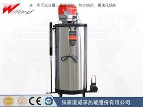 小型医用消毒灭菌(两用)立式燃气蒸汽发生器