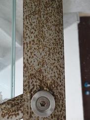 不锈钢楼梯扶手生锈图片