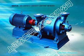 SK型水环式真空泵及压缩机(联轴式真空泵)