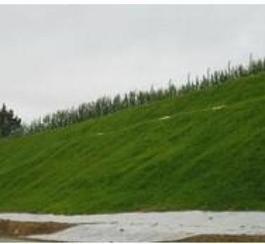 高速公路边坡绿化防护
