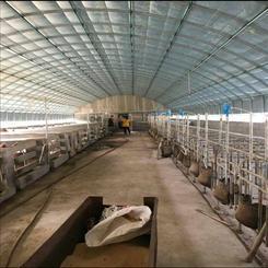 新旺兴农聚氯刚管保温大棚7318种植大棚