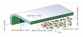 pvc毛细防排水板 供应毛细排水板