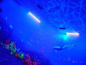 专业海洋馆荧光壁画