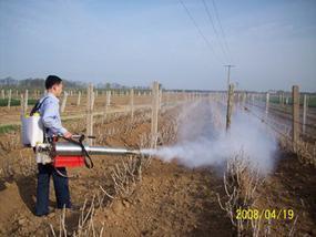 弥雾机 烟雾机由潍坊金亮机械专业生产销售