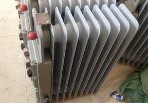 BDR密闭式电暖气工业防爆电油汀