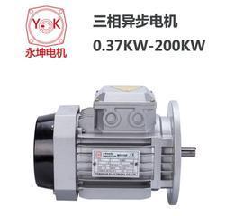 供应YC系列单相电容启动电机