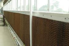 降温湿帘片-温室大棚降温设备