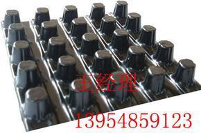 湛江排水板质优价廉/13954859123