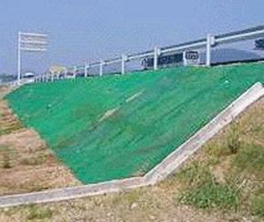 珠江三维植被网生产厂家供应价格低