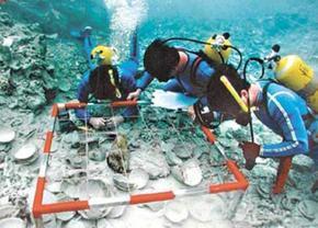黄山潜水水下打捞--水下堵漏\维修