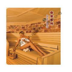 专业承建桑拿房 专业设计ADC图 专业桑拿房设备