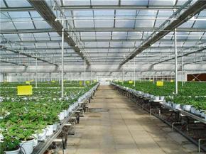 温室大棚建设的有效措施