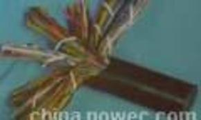 WDZA-DJVPV低烟无卤计算机软电缆-授权制造