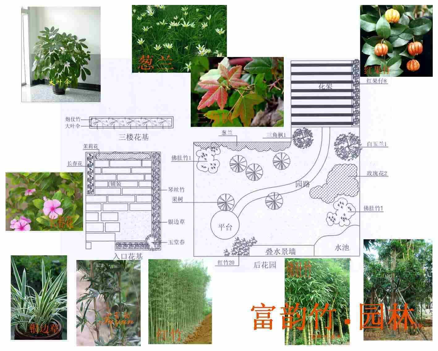 别墅园林设计_co土木在线