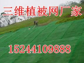 银川三维植被网厂家直销孟总15244109888