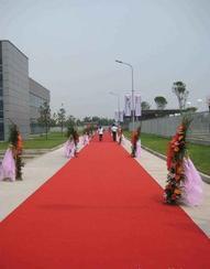 优质婚庆一次性地毯生产厂家在哪里?
