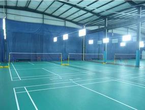 恩宇羽毛球专用PVC弹性地板 羽毛球地胶
