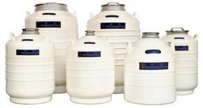 金凤贮存型液氮罐江苏南京