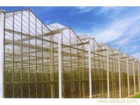 小屋顶玻璃温室大棚