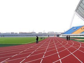 天津足球场人造草皮  足球场人造草坪厂家铺设