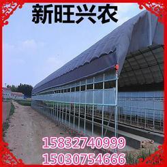新旺兴农养殖大棚7415种植大棚配件
