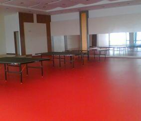 运动场用防滑耐磨塑胶地板厂家专业运动pvc地胶pvc地胶#pvc地板