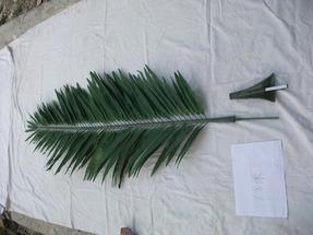 仿真椰子树叶