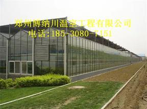 山东智能连栋温室建造价格,博纳川温室安装