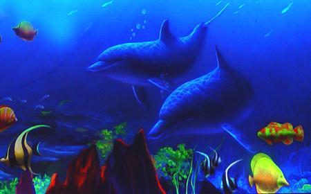 壁纸 动物 海底 海底世界 海洋馆 水族馆 鱼 鱼类 桌面 450_280