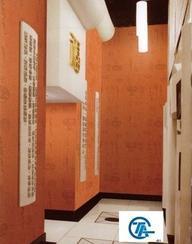 TA绿色环保全国火热招商中零污染室内材料软玻璃壁布